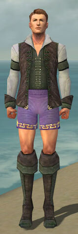 File:Mesmer Performer Armor M gray chest feet front.jpg