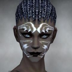 File:Necromancer Sunspear Armor F gray head front.jpg