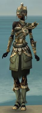Ritualist Elite Imperial Armor F gray front