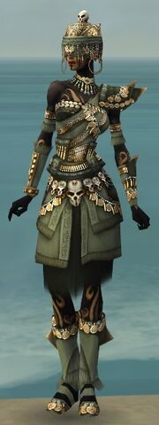 File:Ritualist Elite Imperial Armor F gray front.jpg
