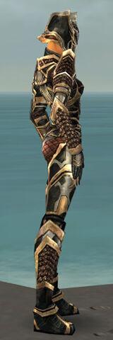 File:Warrior Elite Kurzick Armor F dyed side.jpg