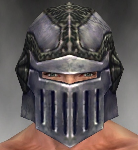 File:Warrior Platemail Armor M gray head front.jpg