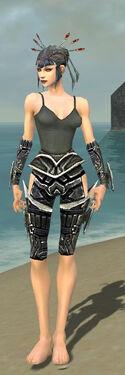 Necromancer Elite Profane Armor F gray arms legs front