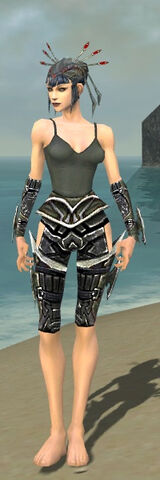 File:Necromancer Elite Profane Armor F gray arms legs front.jpg