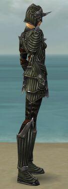 Warrior Wyvern Armor F gray side