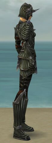 File:Warrior Wyvern Armor F gray side.jpg