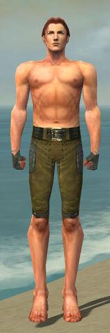 File:Mesmer Ascalon Armor M gray arms legs front.jpg