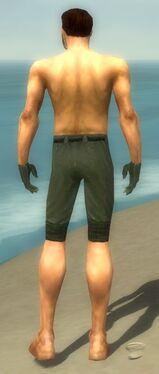 Mesmer Elite Luxon Armor M gray arms legs back
