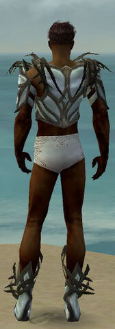 File:Paragon Primeval Armor M gray chest feet back.jpg