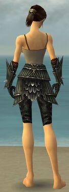 Warrior Wyvern Armor F gray arms legs back