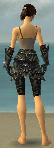 File:Warrior Wyvern Armor F gray arms legs back.jpg
