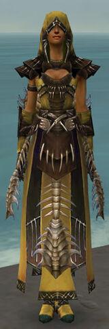 File:Dervish Primeval Armor F dyed front.jpg