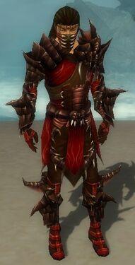 Ranger Primeval Armor M dyed front