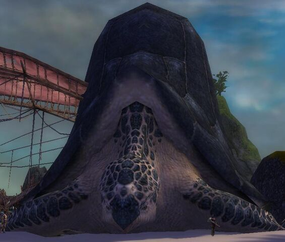 File:Giant Turtle.jpg