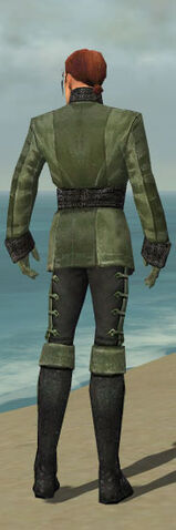 File:Mesmer Shing Jea Armor M gray back.jpg