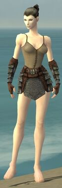 Warrior Krytan Armor F gray arms legs front