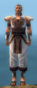 Monk Asuran Armor M dyed front