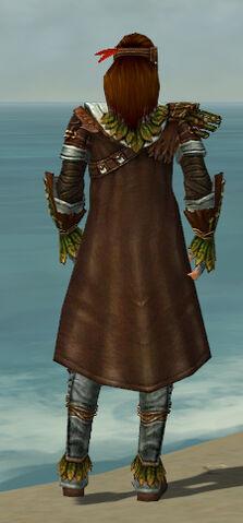 File:Ranger Druid Armor M gray back.jpg