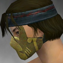 File:Assassin Seitung Armor M dyed head side.jpg