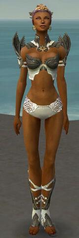 File:Paragon Elite Sunspear Armor F gray chest feet front.jpg