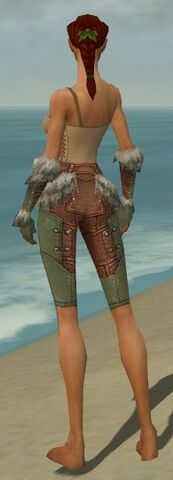 File:Ranger Fur-Lined Armor F gray arms legs back.jpg