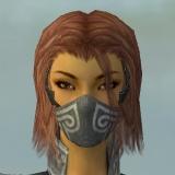File:Assassin Luxon Armor F gray head front.jpg