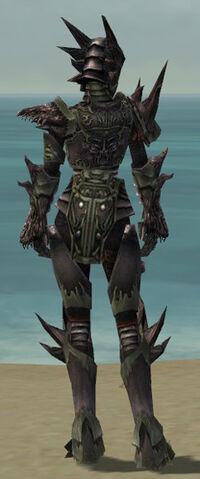 File:Warrior Primeval Armor F gray back.jpg