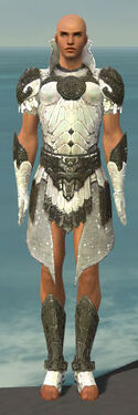 Paragon Elonian Armor M gray front