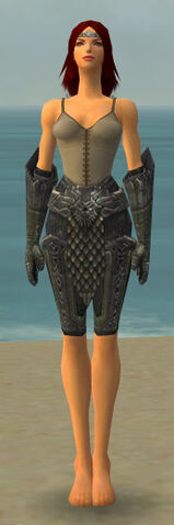 File:Warrior Elite Platemail Armor F gray arms legs front.jpg