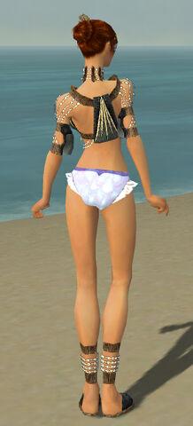 File:Elementalist Sunspear Armor F gray chest feet back.jpg