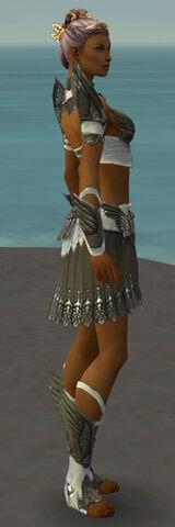 File:Paragon Elite Sunspear Armor F gray side.jpg