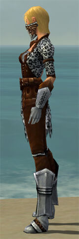 File:Ranger Istani Armor F dyed side.jpg