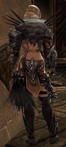 File:Jora Armor Deldrimor Back.jpg