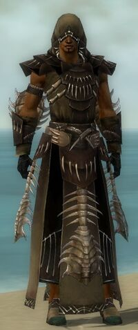 File:Dervish Primeval Armor M dyed front.jpg