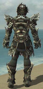 Warrior Silver Eagle Armor M gray back