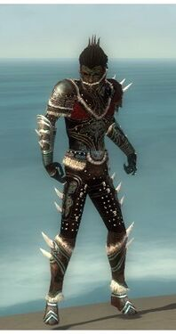 Necromancer Norn Armor M gray front
