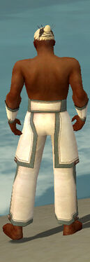 Monk Sacred Armor M gray arms legs back