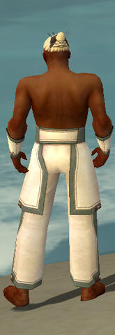 File:Monk Sacred Armor M gray arms legs back.jpg