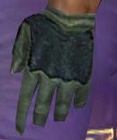 File:Mesmer Elite Kurzick Armor M gloves.jpg