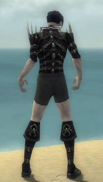 Necromancer Elite Cabal Armor M gray chest feet back
