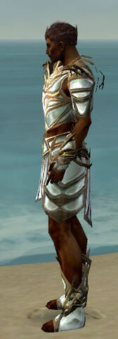File:Paragon Primeval Armor M dyed side.jpg
