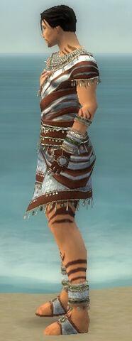 File:Ritualist Exotic Armor M gray side.jpg
