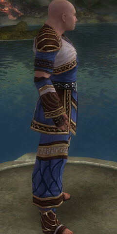 File:Monk Elite Canthan Armor M dyed side alternate.jpg