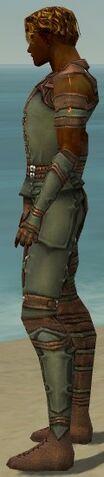 File:Ranger Ascalon Armor M gray side.jpg