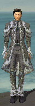 Elementalist Iceforged Armor M gray front