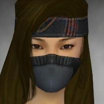 File:Assassin Ancient Armor F gray head front.jpg