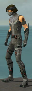 Assassin Canthan Armor M gray side