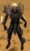 Necromancer Primeval Armor M gray front