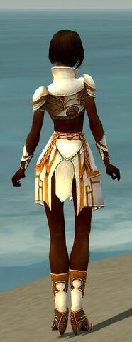 File:Paragon Asuran Armor F dyed back.jpg