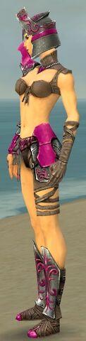 File:Warrior Elite Gladiator Armor F dyed side.jpg